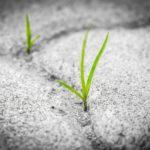 Infertilità e depressione: quel nido vuoto che fa male